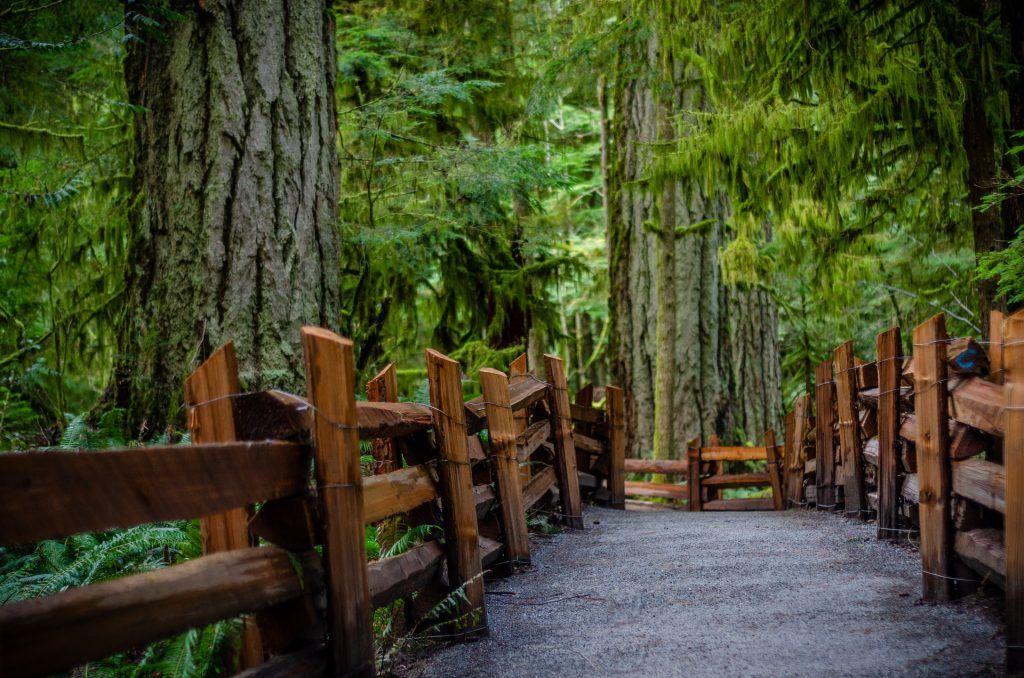 Parque en Vancouver